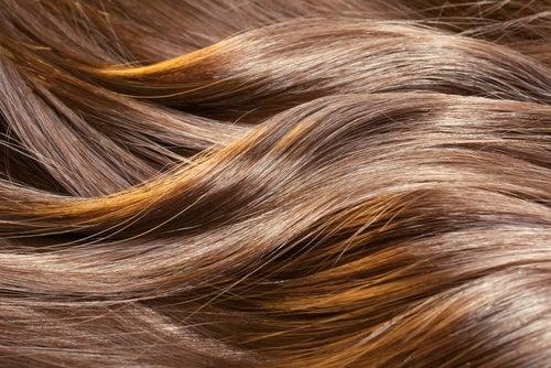 ¿Es posible hacer crecer el cabello?