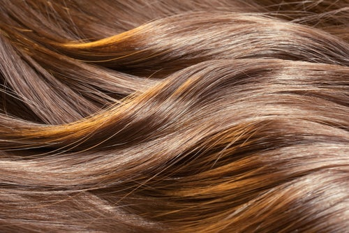 La enfermedad del intestino la caída de los cabello