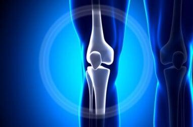 Recreación de huesos de la rodilla