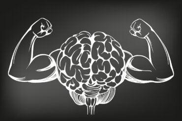 ¿Cómo repercute el ejercicio físico en el cerebro?