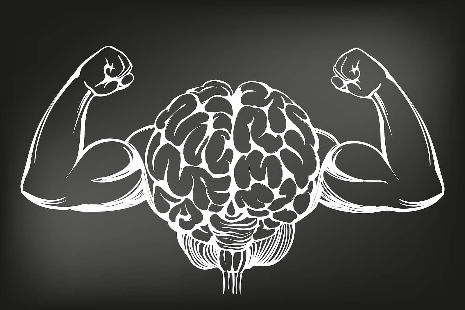 Cerebro se fortalece jugando sudoku.
