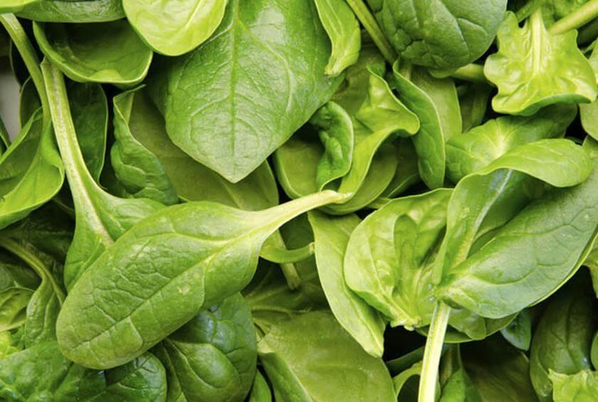 Beneficios que te aportan las espinacas