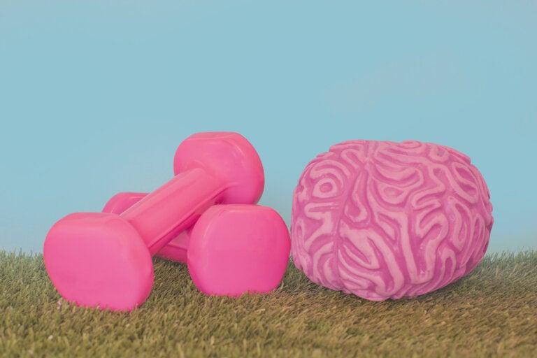 ¿Es posible fortalecer el sistema nervioso?