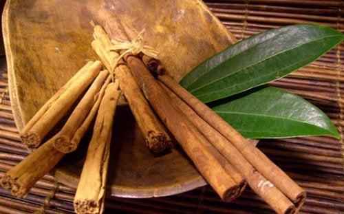 La canela y el laurel, plantas para bajar de peso