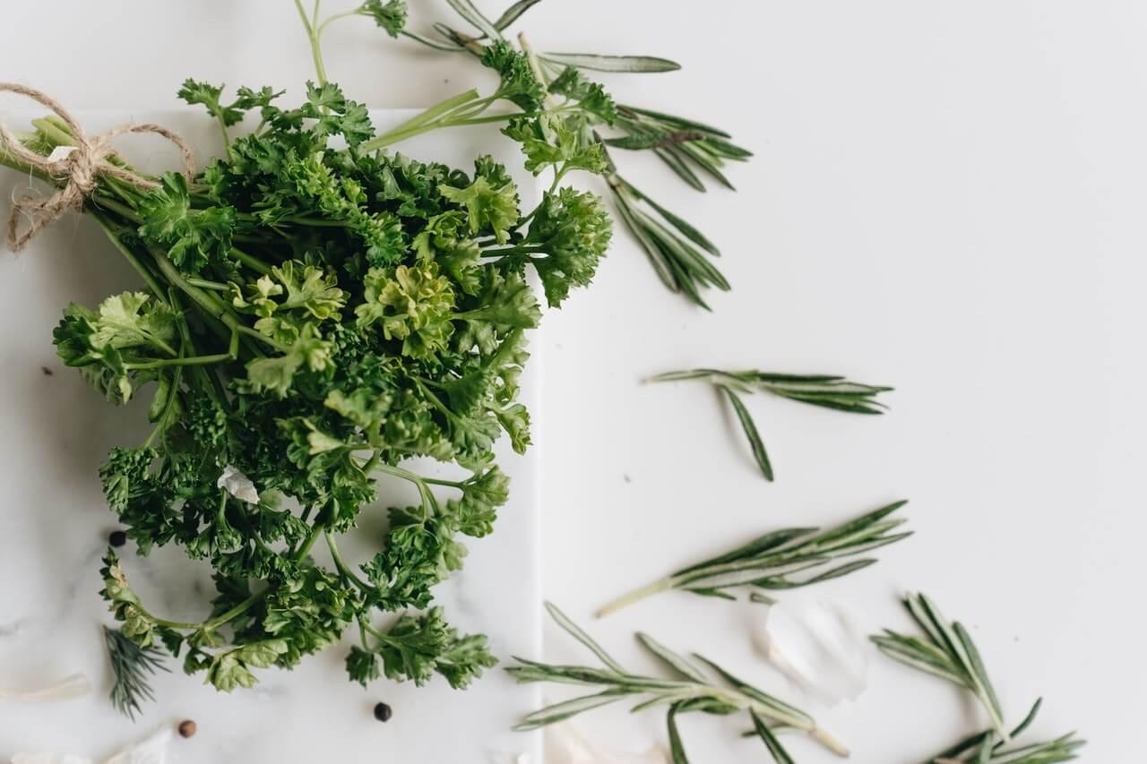 Las mejores plantas para bajar de peso