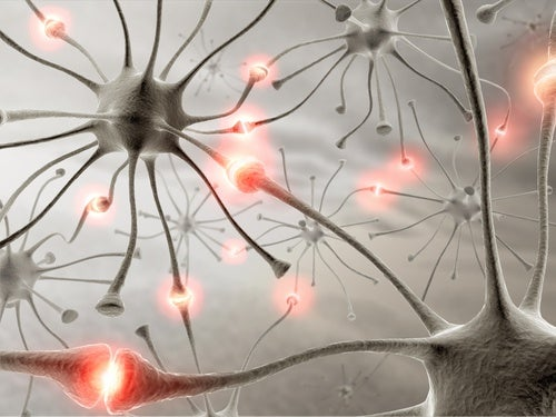 Cómo tener un cerebro sano y fuerte