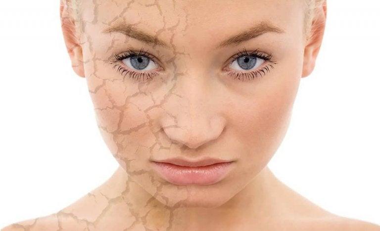 Alimentos y suplementos para la piel seca y apagada