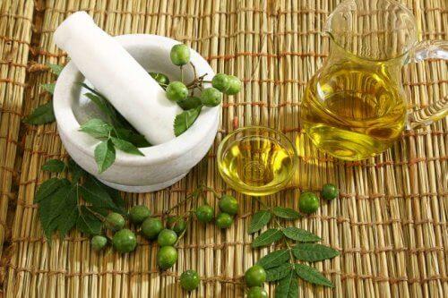 aceite de neem: aceites para nuestro cabello.