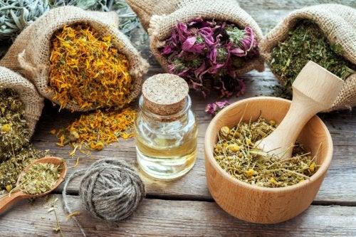 ¿Homeopatía: una aliada en el tratamiento de las hemorroides?