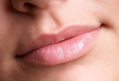 labios sanos y protegidos