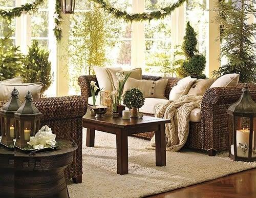 Plantas que ayudan a purificar tu hogar