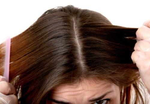 Tratamiento para el cabello graso
