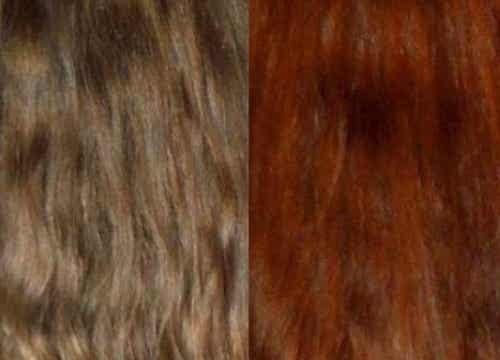 ¿Cómo teñir el cabello con extractos naturales?