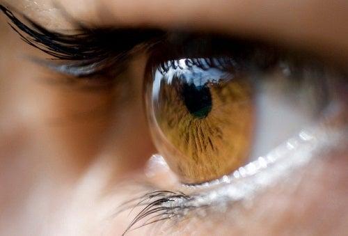 ¿Qué nos dice el color de nuestros ojos?