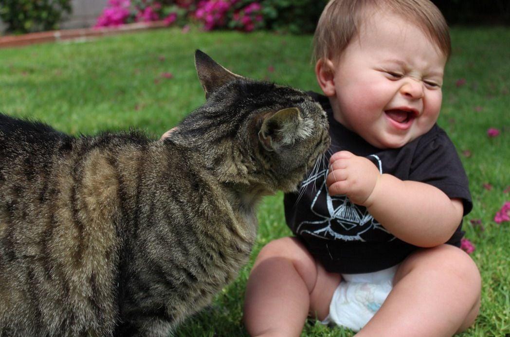 Gato-y-bebe-Nutripienso