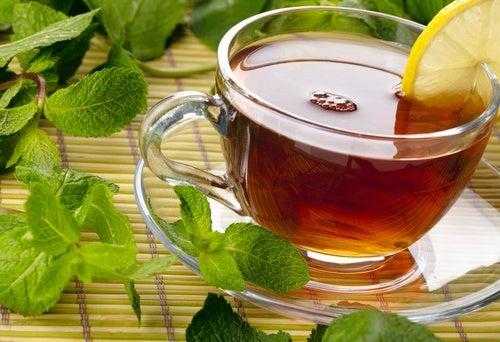 Plantas medicinales para curar los intestinos