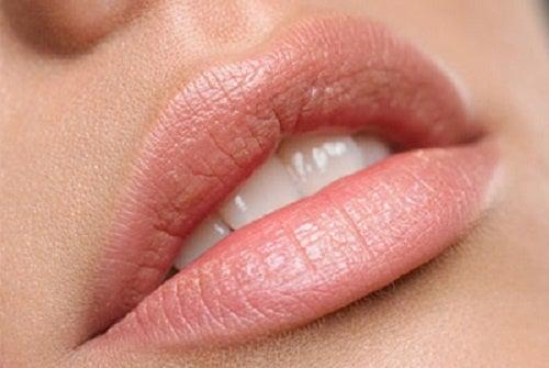 Labios hidratados en 5 minutos