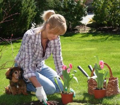 cuida-tu-jardin-para-realizar-actividad-fisica