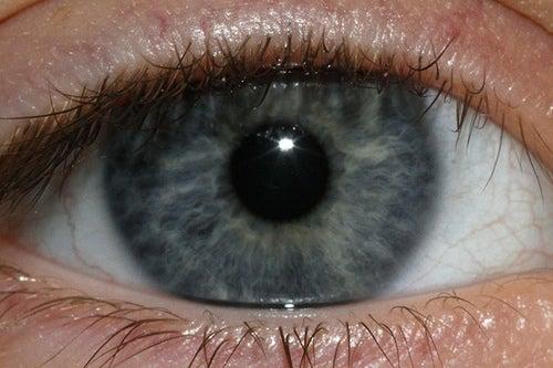 ¿Qué nos dice el color de ojos azul?