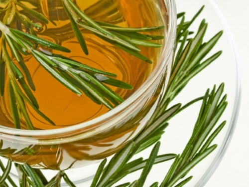 romero, uno de los antiinflamatorios naturales más usados