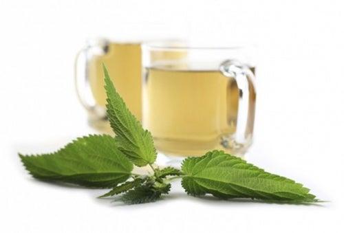 El té de ortigas es ideal para la prevención de cálculos biliares.