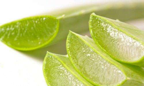 Aloe vera para reducir los dolores de la artritis