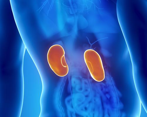 8 síntomas de una enfermedad renal