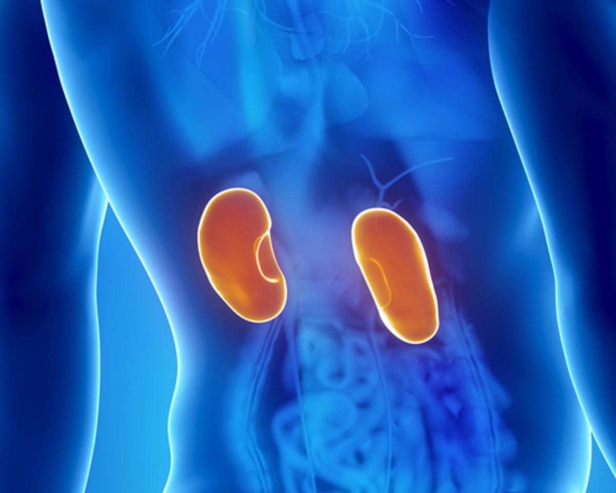 cuales son los sintomas cuando hay problemas en el riñon