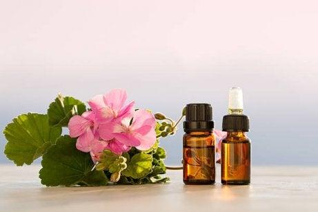 Aceite esencial de geranio para nuestro tónico facial