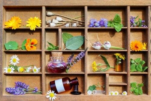 Medicamentos esenciales en un botiquin