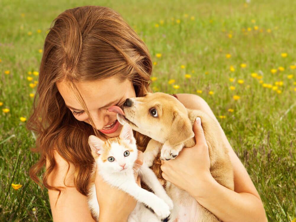 Amor por la mascota.