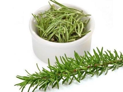 Propiedades del té de romero - Mejor Con Salud