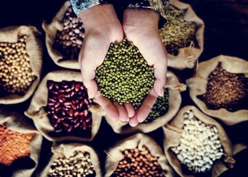 Beneficios de las legumbres y tips para consumirlas.