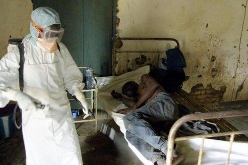 ¿El ébola puede llegar al continente Americano? ¿Cómo actuar?
