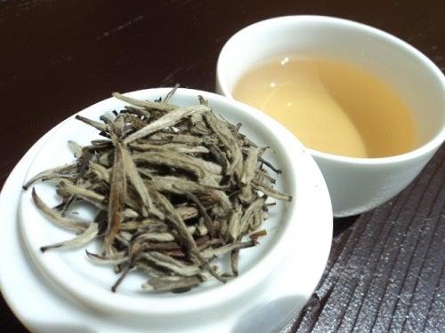 El té blanco: adelgazante, saludable y sabroso