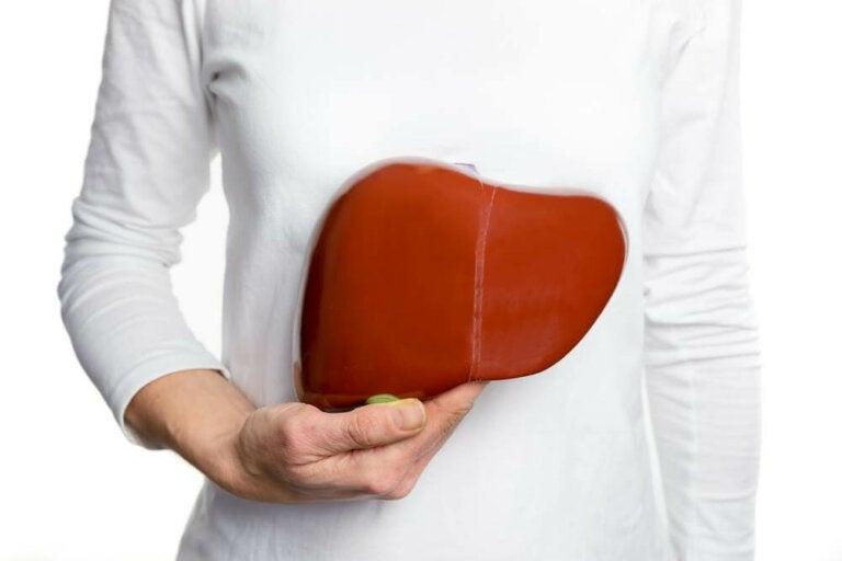 8 tips para fortalecer el hígado naturalmente