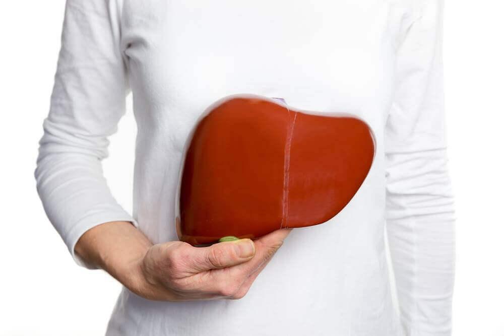 Hígado humano.