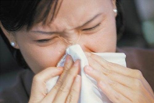 Remedios naturales para las alergias respiratorias en ninos