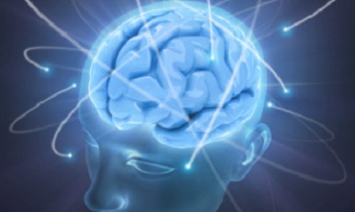 5 consejos para mantener un cerebro sano