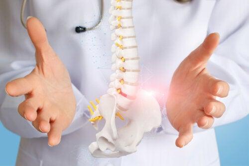 Consejos que debes seguir para prevenir la osteoporosis