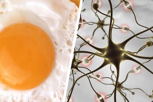 Alimentos y recomendaciones para mejorar la memoria
