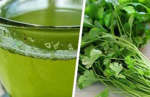 Propiedades del cilantro para la salud