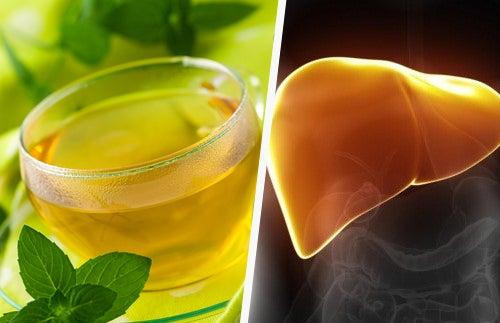Mejorar la inmunidad del hígado