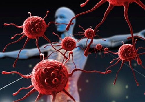 ¿Qué destruye y debilita el sistema inmune?