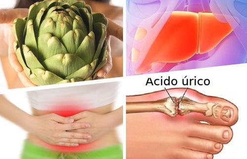 Grandes usos medicinales de la alcachofa