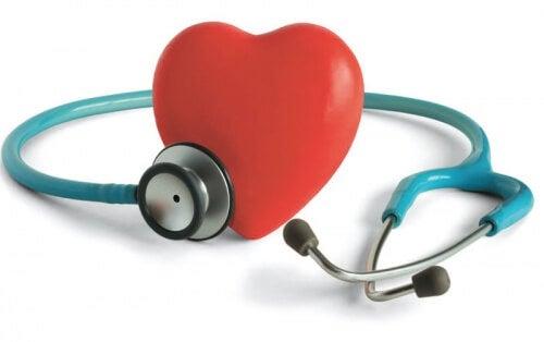 Mejores plantas medicinales para la hipertensión.