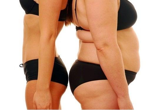 La obesidad afecta a los ovarios