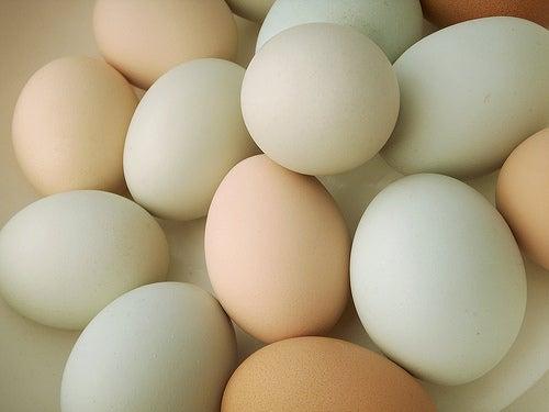 comer huevos es sano