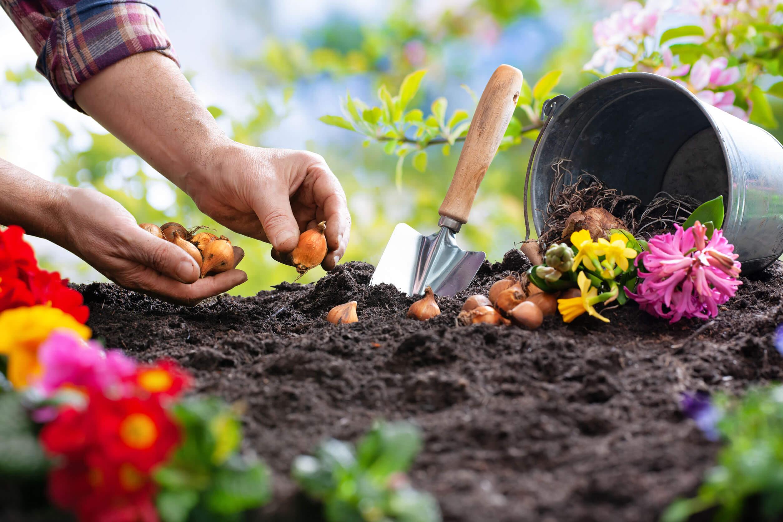 Para relajarse en cinco minutos, la jardinería puede ser útil.