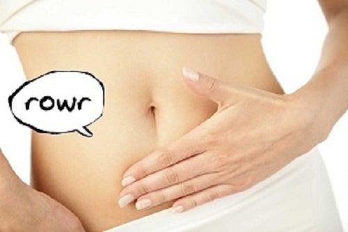 Razones por las que nos gruñe el estómago que seguro no conocías